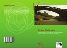 Bookcover of Bistum Rio Grande
