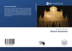 Buchcover von Bistum Rochester