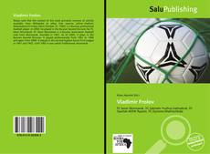 Bookcover of Vladimir Frolov