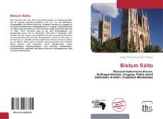 Buchcover von Bistum Salto