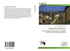 Bookcover of Cegielnia-Kosewo