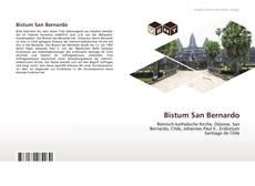 Capa do livro de Bistum San Bernardo