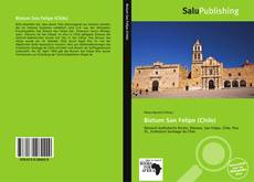 Bookcover of Bistum San Felipe (Chile)