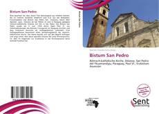 Portada del libro de Bistum San Pedro