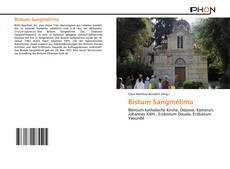 Bistum Sangmélima的封面