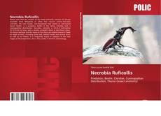 Necrobia Ruficollis的封面