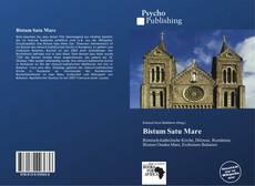 Bistum Satu Mare kitap kapağı
