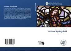 Bookcover of Bistum Springfield