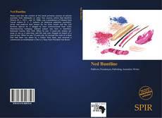 Bookcover of Ned Buntline
