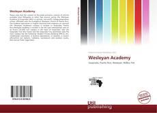Buchcover von Wesleyan Academy