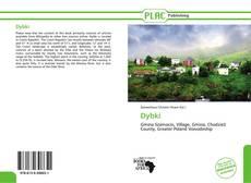 Buchcover von Dybki
