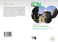 Bookcover of Bistum Tarahumara