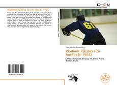 Bookcover of Vladimír Růžička (ice hockey b. 1963)