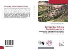 Bookcover of Brzezinka, Gmina Sobienie-Jeziory