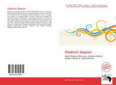 Bookcover of Vladimir Slepian