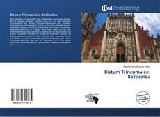 Bookcover of Bistum Trincomalee-Batticaloa