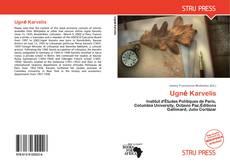 Buchcover von Ugnė Karvelis