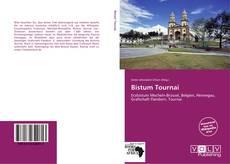 Bistum Tournai的封面