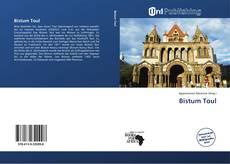 Couverture de Bistum Toul