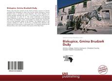 Portada del libro de Biskupice, Gmina Brudzeń Duży