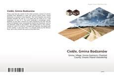 Copertina di Cieśle, Gmina Bodzanów