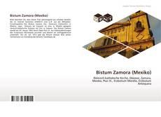 Buchcover von Bistum Zamora (Mexiko)