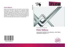 Bookcover of Peter Ndlovu