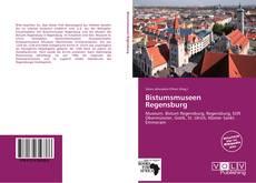 Buchcover von Bistumsmuseen Regensburg