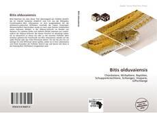 Buchcover von Bitis olduvaiensis
