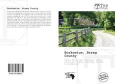 Bookcover of Borkowice, Brzeg County