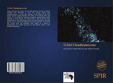 Bookcover of 11264 Claudiomaccone