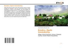 Обложка Brzeźce, Opole Voivodeship