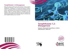 Couverture de Terephthalate 1,2-Dioxygenase