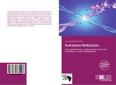 Bookcover of Sulcatone Reductase