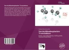 Buchcover von Succinyldiaminopimelate Transaminase