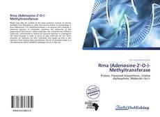 Capa do livro de Rrna (Adenosine-2'-O-)-Methyltransferase