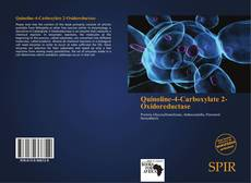 Bookcover of Quinoline-4-Carboxylate 2-Oxidoreductase