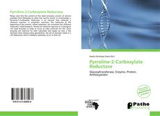 Bookcover of Pyrroline-2-Carboxylate Reductase