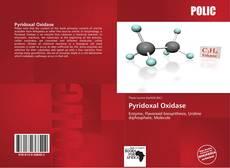 Buchcover von Pyridoxal Oxidase