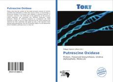 Bookcover of Putrescine Oxidase