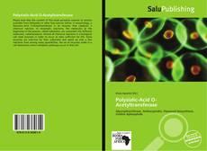 Borítókép a  Polysialic-Acid O-Acetyltransferase - hoz