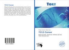 Bookcover of 7213 Conae