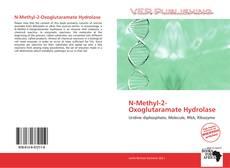 Bookcover of N-Methyl-2-Oxoglutaramate Hydrolase