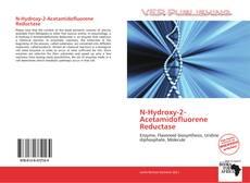 Bookcover of N-Hydroxy-2-Acetamidofluorene Reductase