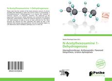 Bookcover of N-Acetylhexosamine 1-Dehydrogenase