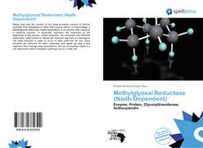 Bookcover of Methylglyoxal Reductase (Nadh-Dependent)