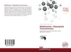 Bookcover of Methionine—Glyoxylate Transaminase
