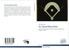 St. Cloud River Bats kitap kapağı