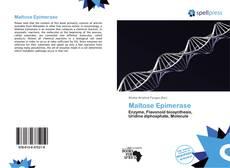 Maltose Epimerase kitap kapağı