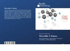 Bookcover of Macrolide 2'-Kinase